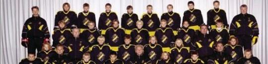 Tjäna pengar som AIK Hockey Team -95