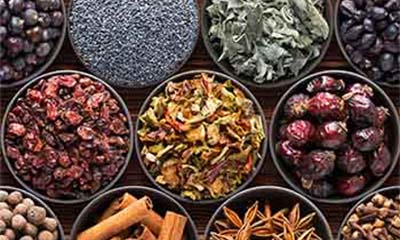 Sälja kryddor